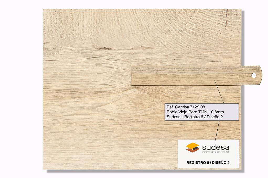 Sudesa - Registro 6 Diseño 4