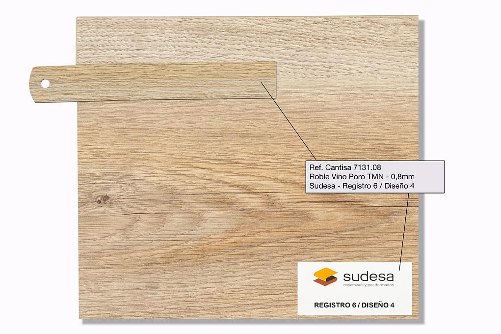 Sudesa - Registro 6 Diseño 2