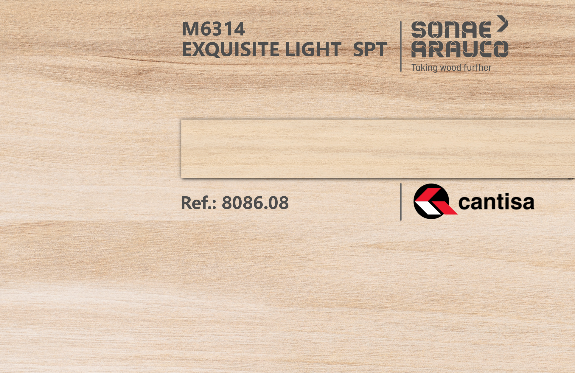 Exquisite Light | Innovus Sonae Arauco