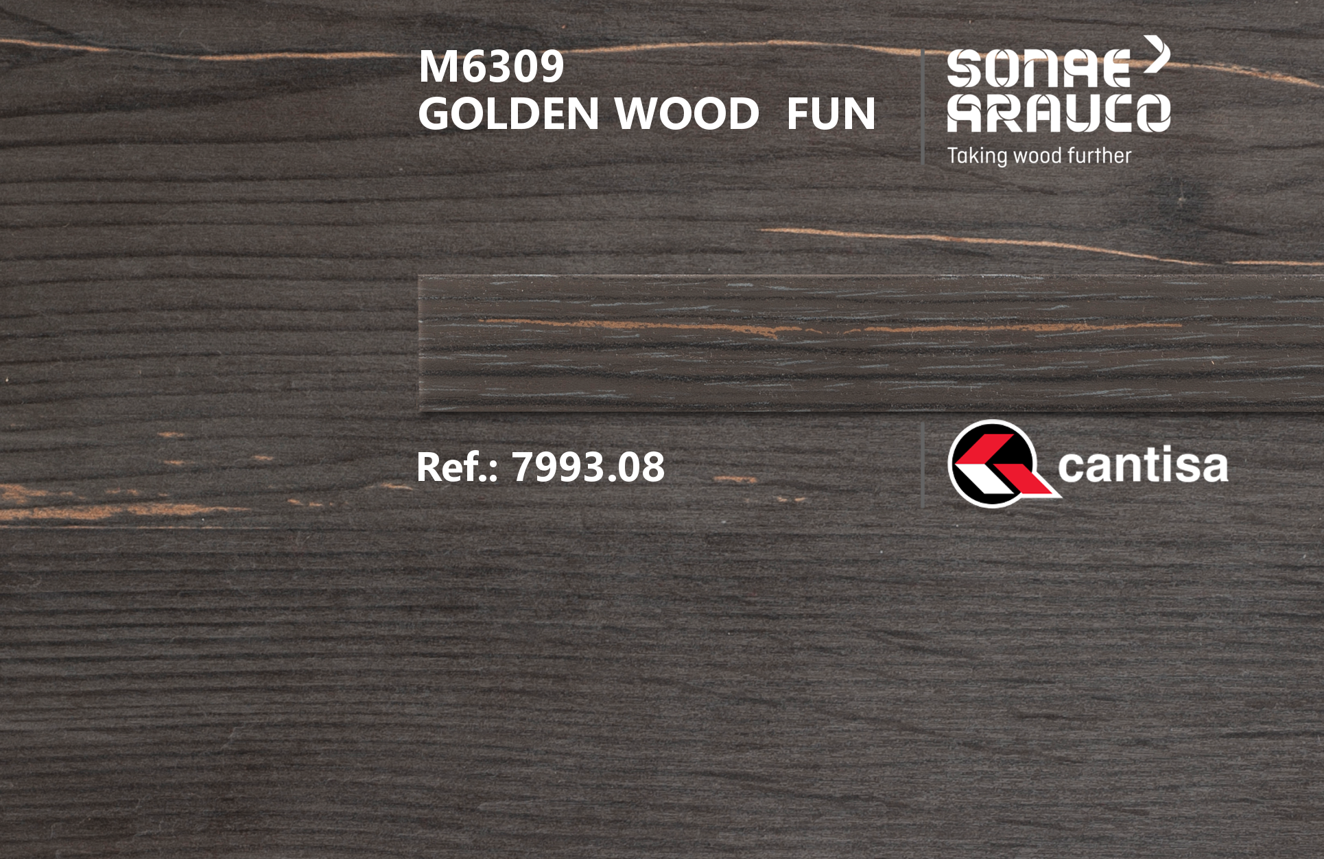 Golden Wood | Innovus Sonae Arauco