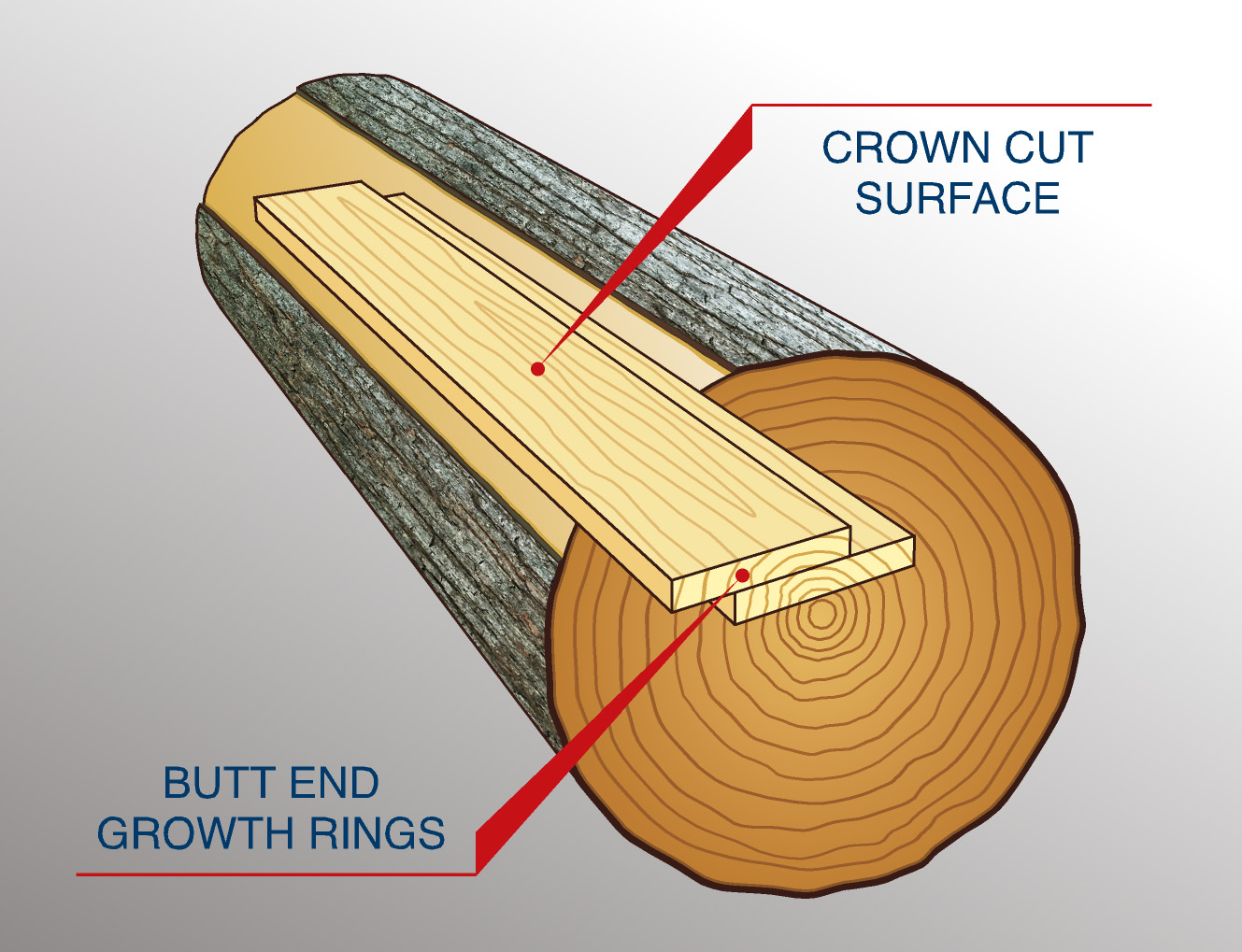 Crown cut surface